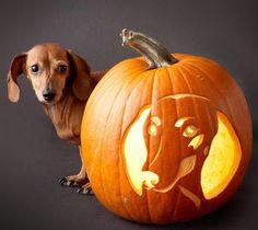 FREE Dachshund Pumpkin Carving Stencil Pattern - I Love Dachshunds