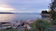 the Sea Walk - Campbell River Sea Walk, Vancouver Island, Island Life, Landscape Photographers, Beach Photos, Nature Photos, British Columbia, West Coast, Natural Beauty