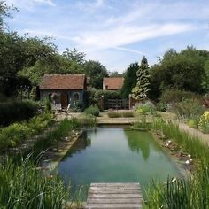 The natural swimming pond at Snares Hill Cottage, Duck End, Stebbing, Essex Check out the website to see Swimming Pool Pond, Natural Swimming Ponds, Natural Pond, Garden Pool, Water Garden, Herb Garden, Pond Water Features, Dream Pools, Pool Designs
