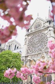 Springtime in Paris.  Next year!!!