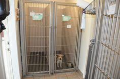 exterieur cabinet vétérinaire - Recherche Google