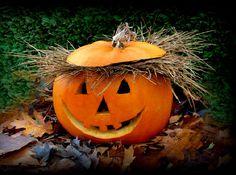 funny easy pumpkin