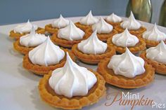 Mini Pumpkin Pies - Perfect for Thanksgiving!