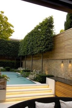 Evergreen Pleached Trees for Outdoor Landscaping 21 Fascinating Evergreen Pleached Trees for Outdoor Landscaping Evergreen Pleached Trees for Outdoor Landscaping 21 Modern Garden Design, Contemporary Garden, Landscape Design, Abstract Landscape, Landscape Paintings, Back Gardens, Small Gardens, Outdoor Gardens, Garden Privacy
