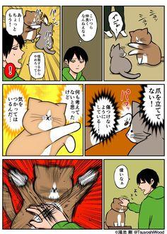 埋め込み画像 Cat Comics, Pretty Cats, Cat Art, Funny Cats, Comedy, Funny Pictures, Doodles, Jokes, Kitty