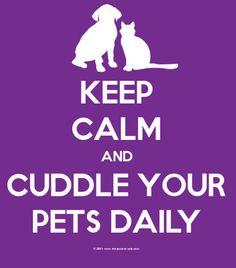 Its simple.  Follow DOGTV for awesome treats for humans who love their dogs! dogtv.com facebook.com/tv4dogs twitter.com/dogtv blog.dogtv.com