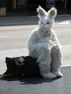 No work, No play and Mr. Bunny HAS a Really Bad day!.