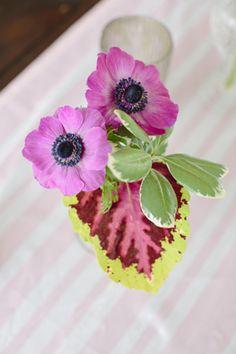 purple anemone centerpiece   Paige Winn #wedding