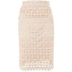 Geometric Lace Skirt by Tfnc (804.225 IDR) ❤ liked on Polyvore featuring skirts, nude, calf length skirts, lacy skirt, tfnc, pink skirt and knee length lace skirt