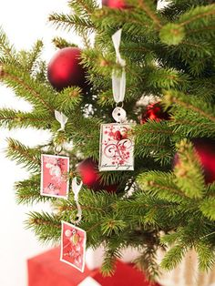 Hang your friends and family on your Christmas tree