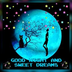 Lovely Good Night, Night Gif, Sweet Dreams, Inspirational, Words, Movie Posters, Good Night, Film Poster