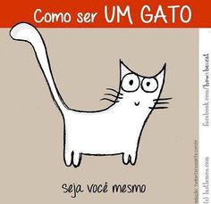 ❤️❤️ #petmeupet  #filhode4patas  #gato #amogato  #gatofolgado  #gatofofo  #gatinho  #bomdia