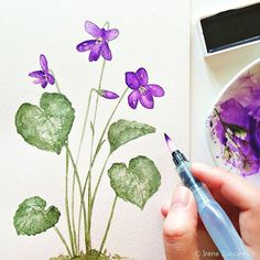 Fioriscono violette... // Blooming violets - by Irene Zuccarello    #drawing #watercolor #draw #handdrawn #violets #violet #viola #violette #violettes #acquarelli #acquerelli #acquarello #fiori #flowers #green #verde #foglie #leaves #hearts #handmade #sketch #disegno #illustrazione #illustration #nature #natura #colors #colori #coloring