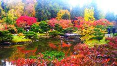Japanese Garden by Peter Lik