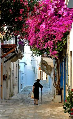 A picturesque alley.. Tinos Island, Greece (by jjbach)