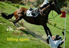Equestrian Problems.: Photo
