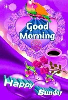 Sunday Images, Happy Sunday, Good Morning, Buen Dia, Bonjour, Good Morning Wishes