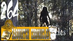 Bigfoot Hotspot Radio // SC EP: 264 One who runs and hides