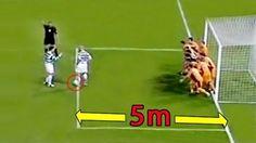 Gol Tendangan Bebas Di Dalam Kotak Penalti HD