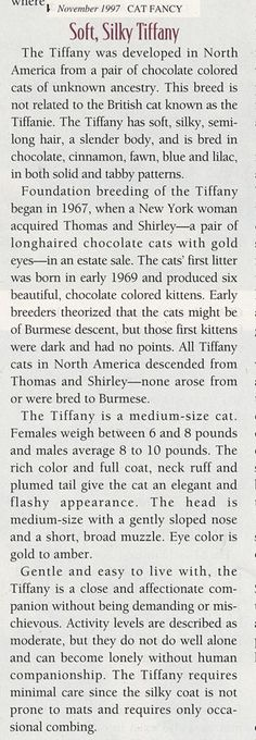 Chantilly - in 1997 Cat Fancy Issue Contributer: Sarah Hartwell