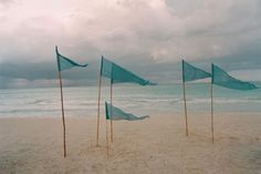lovely beach with turquoise pennants