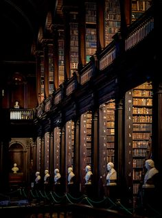 Trinity College Library, Dublin, Ireland  photo via wander