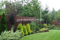 Mały ogród miejski - Gardenarium