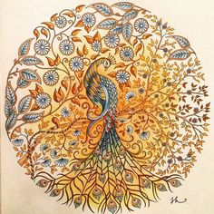 Color Pencil Drawing Ideas Orange Peacock - Diamond Painting Kit – My Diamond Paintings - Secret Garden Book, Johanna Basford Secret Garden, Secret Garden Coloring Book, Johanna Basford Coloring Book, Color Pencil Art, Colorful Garden, Coloring Book Pages, Adult Coloring, Illustration