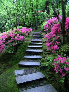 Beautiful Garden Pathway Up the slope #Hillside Landscaping