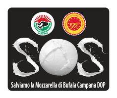 Save Mozzarella di Bufala Campana. Visit our website for more info www.mozzarelladop.it