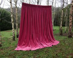 LOVE!! random photo of a theater curtain (for sale on ebay) in a birch forest SO GREAT !!!! humbly and unintentionally genius.