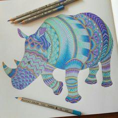Azores Rhino Done Acores Milliemarottabooks Milliemarotta Wildsavannah Marcorafinne
