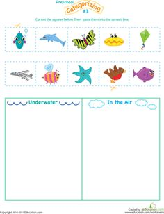 Preschool Sorting & Categorizing Worksheets: Cut and Categorize #3