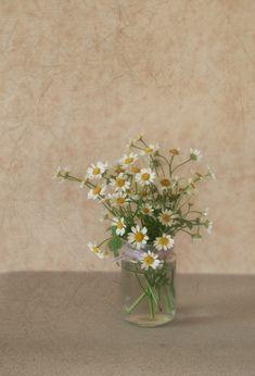 daisy flowers - flowers in a jam jar