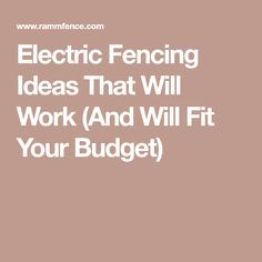 Electric Fencing Ideas That Will Work (And Will Fit Your Budget) Electric Fencing, Horse Fencing, Wire Fence, Budgeting, Horse Riding, Fitness, Barn, Ideas, Chain Link Fence