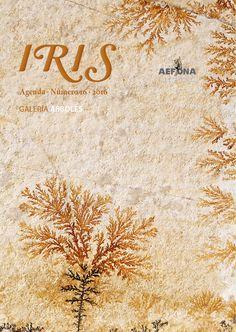 Número 16 de la revista 'Agenda Iris'. Nuevas condiciones y plazos - http://www.aefona.org/revista-digital-agenda-iris-16/