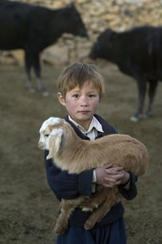 Repining this because I could see me nieces doing the same thing... awe... and I like the cows in the back...