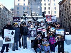 Kebek Animal Rights Association join National Anti-Fur Day 2013 (Photos)