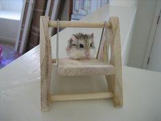 DIY Wood Hamster Swing - PetDIYs.com