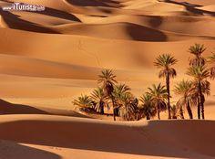 deserto libia - Pesquisa Google