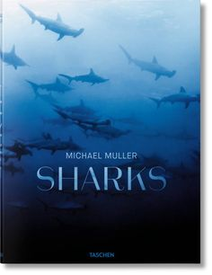Sharks Face-to-Face with the Ocean's Endangered Predator Michael Muller Taschen Shark Books, Shark Photos, Ocean Depth, Most Popular Books, All Themes, Coffee Table Books, Book Photography, Holiday Gift Guide, Plexus Products