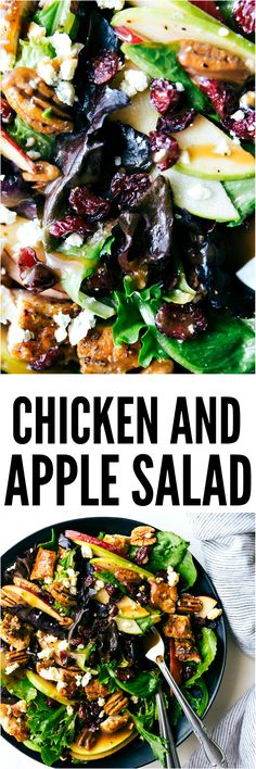 Chicken and Apple Salad with a Honey Dijon Vinaigrette is the perfect fall salad full of crisp apples, cranberries, crunchy pecans and bleu cheese. This salad is easy to put together and so mouthwatering!