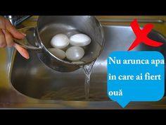 Kitchen Hacks, Good To Know, Eggs, Neon, Youtube, Breakfast, Aurora, Relax, Diet