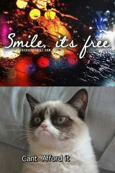 Smile, Grumpy Cat, it's free!  Silly Tard, you forgot your apostrophe!  Oh, well, I love you anyway!