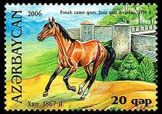 Karabakh Horse on Postage Stamp