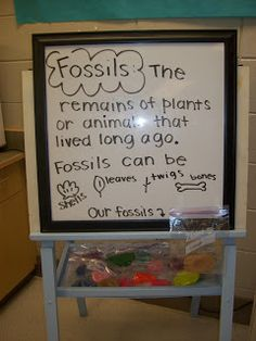 First Grader...at Last!: Beware of Dinos...(and Mrs. Cooley Finds her Inner Mrs. Frizzle)