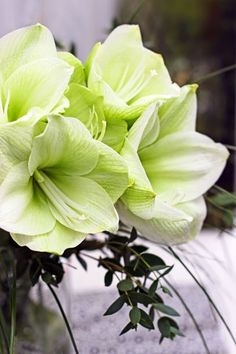 A Bunch for the Weekend-# 32-Amaryllis-Ingrid Henningsson-Of Spring and Summer.  Dec.Flower❤️〰