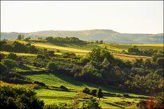 Spring on slopes of Fruska Gora or Vojvodina Serbia