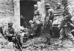Soldiers of 17. SS Panzer-Grenadier Division ''Götz von Berlichingen'' with paratroopers of 6. Fallschirmjäger-Regiment near Carentan, ca. 10th June 1944.