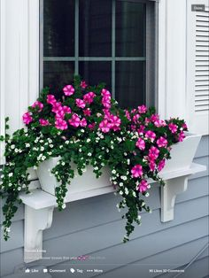 63 simple container garden flowers ideas 13 is part of Container gardening flowers - 63 simple container garden flowers ideas 13 Container Flowers, Flower Planters, Container Plants, Container Gardening, Succulent Gardening, Succulents In Containers, Flower Gardening, Window Box Flowers, Front Porch Flowers
